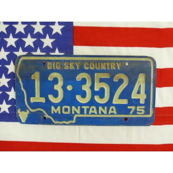 Americká spz Montana 133524