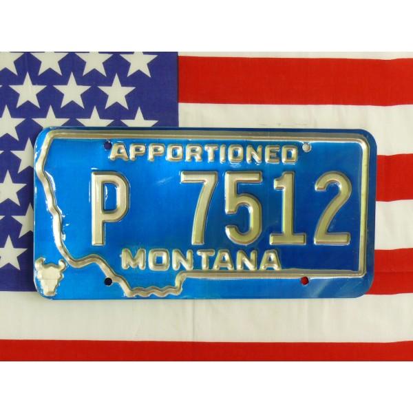 Americká spz Montana p7512
