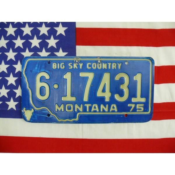 Americká spz Montana 6-17431