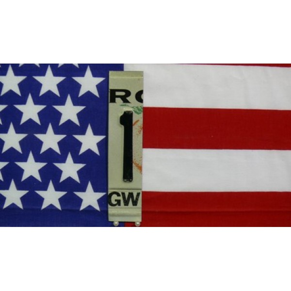 Části Amerických SPZ číslice 1
