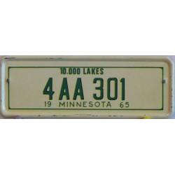 Mini americká SPZ Minnesota 2