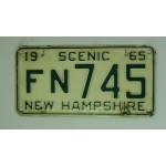 Americké spz New Hampshire historické 1965 pár